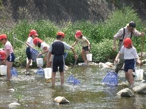 大原川探検