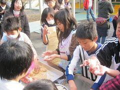 きなこ餅1